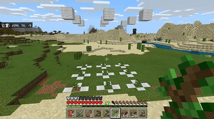 完成した植林場