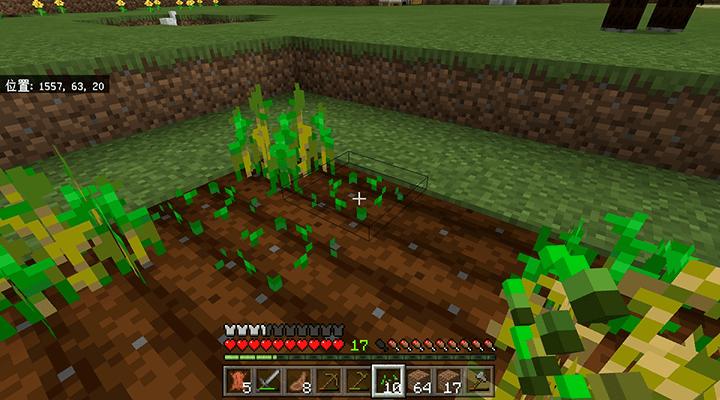 種を植えて放置