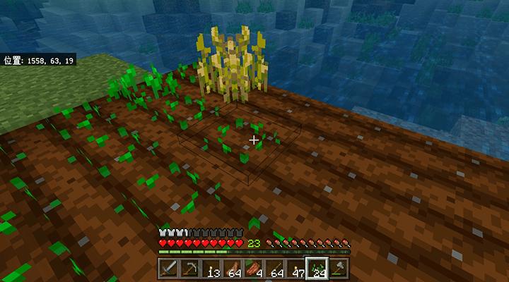 収穫&植え付け