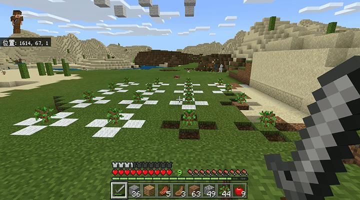 中途半端な植林場