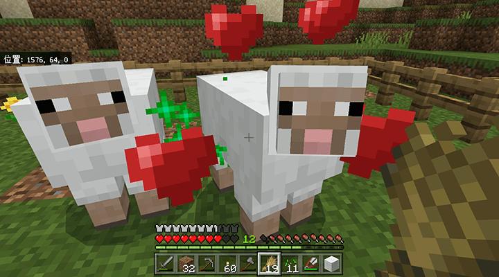 成長した羊