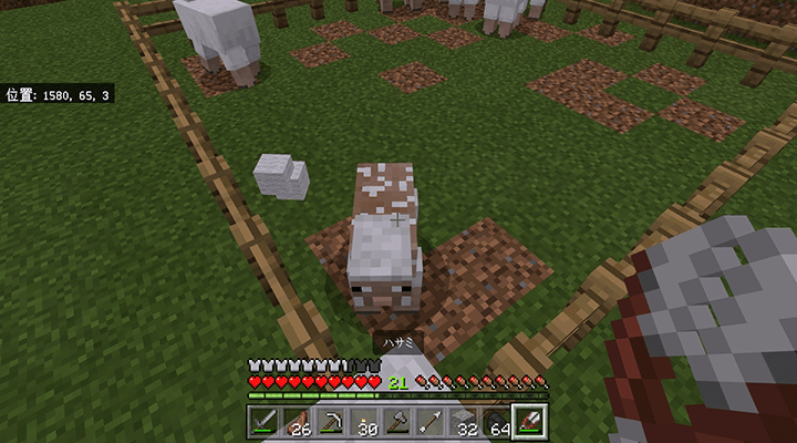羊の毛をかる