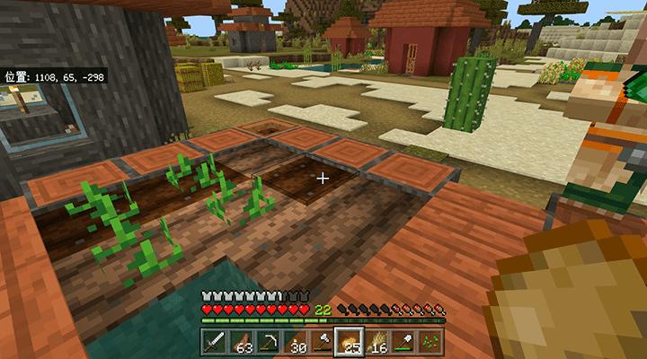 植え直したジャガイモ