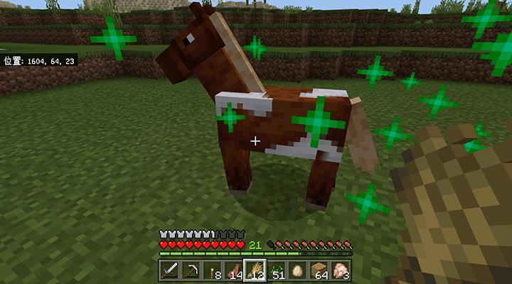 大人に成長した馬