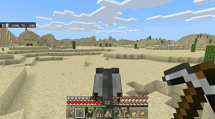 砂漠の寺院を通り過ぎる