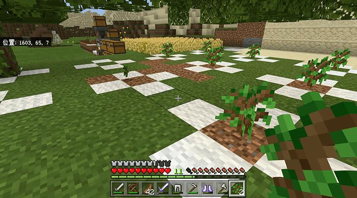 きれいになった植林場