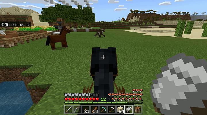 拠点にスポーンした馬