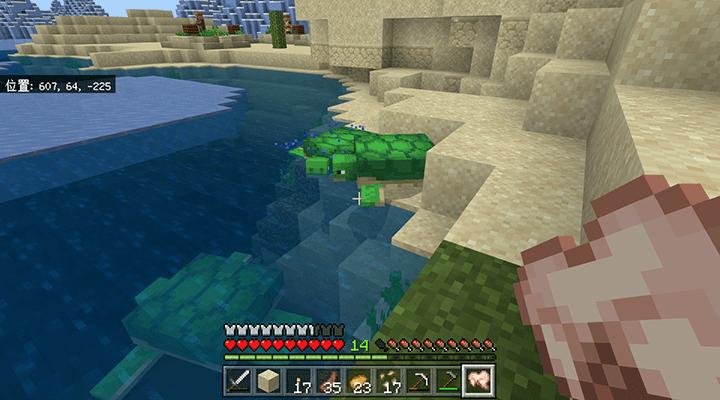 砂浜のカメ