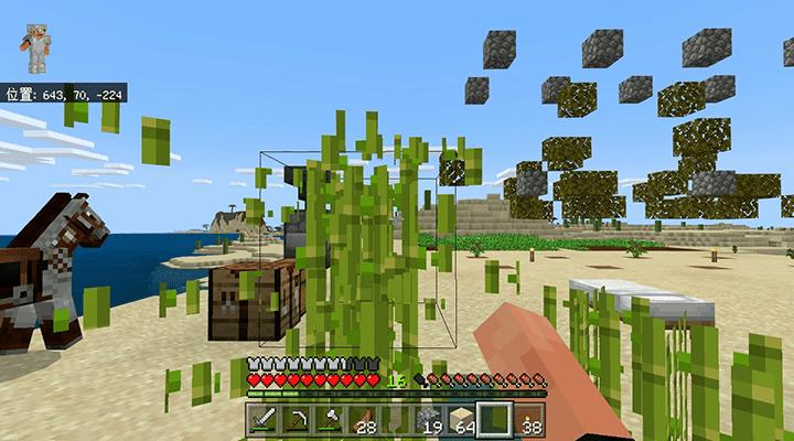 破壊されるサトウキビ
