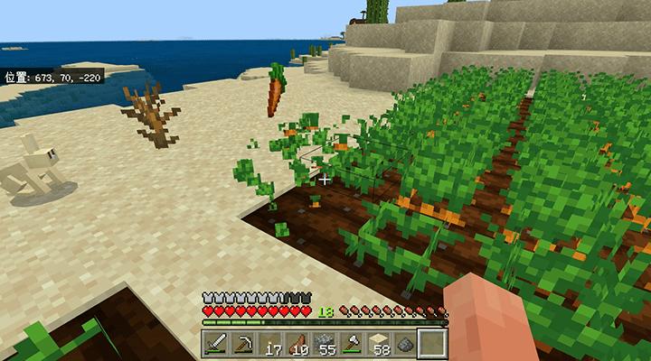 収穫されたニンジン